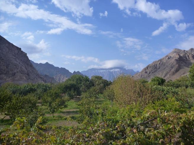 Das fruchtbare Meghri-Tal
